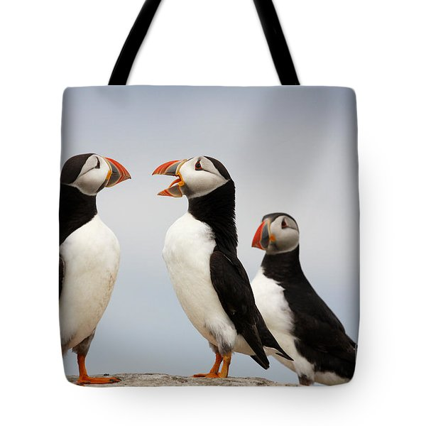 Puffins Chat On The Farne Islands Great Britain Tote Bag