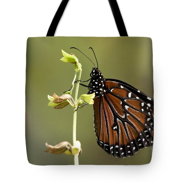 Tote Bag featuring the photograph Queen Butterfly by Meg Rousher