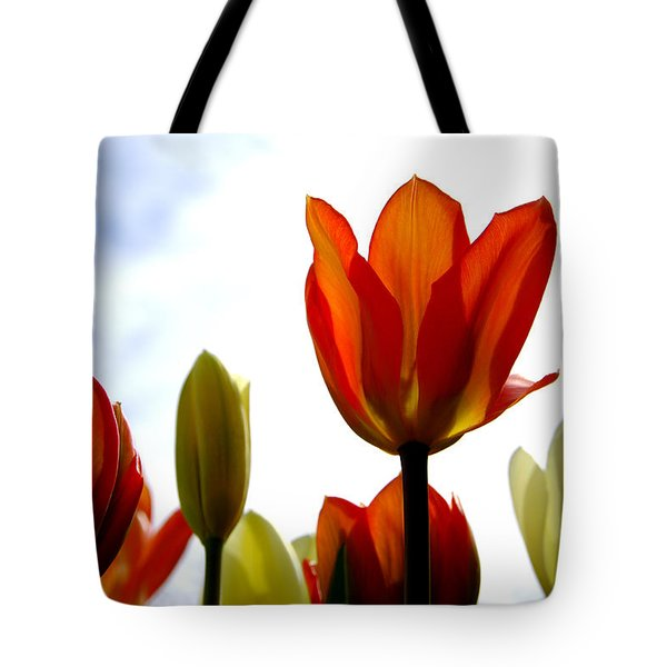 Tote Bag featuring the photograph Reaching For The Sun by Marilyn Wilson