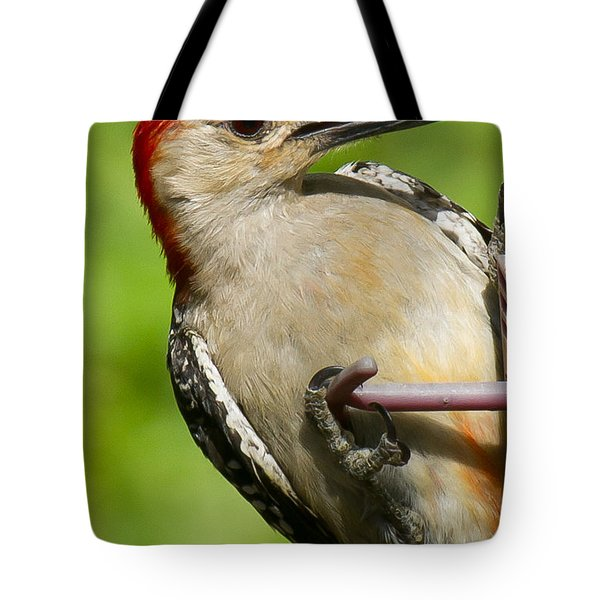 Red Bellied Woodpecker Tote Bag by Robert L Jackson