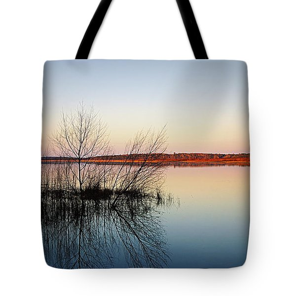 Reflections On Lake Jackson Tallahassee Tote Bag by Paul  Wilford