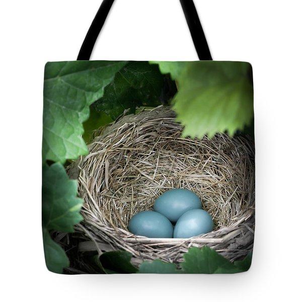 Robin Egg Blues Tote Bag by James Barber