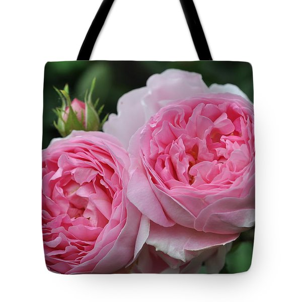 Tote Bag featuring the photograph Rose Constance Spry by Sabine Edrissi