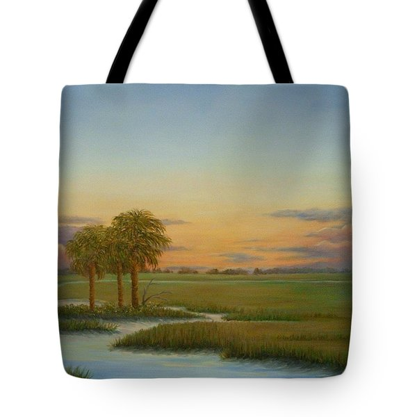 Santee Sunset Tote Bag by Audrey McLeod