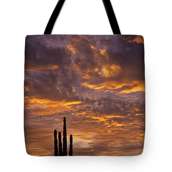 Silhouetted Saguaro Cactus Sunset At Dusk With Dramatic Clouds Tote Bag