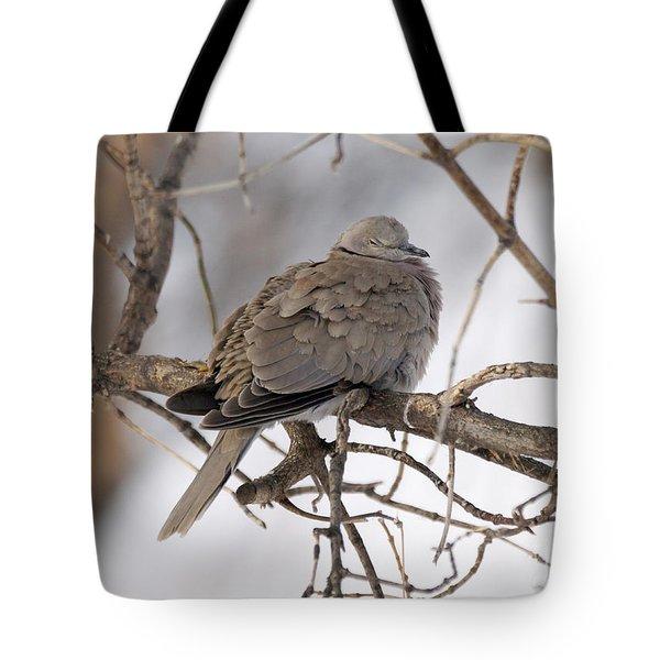 Sleeping Beauty Tote Bag by Lori Tordsen