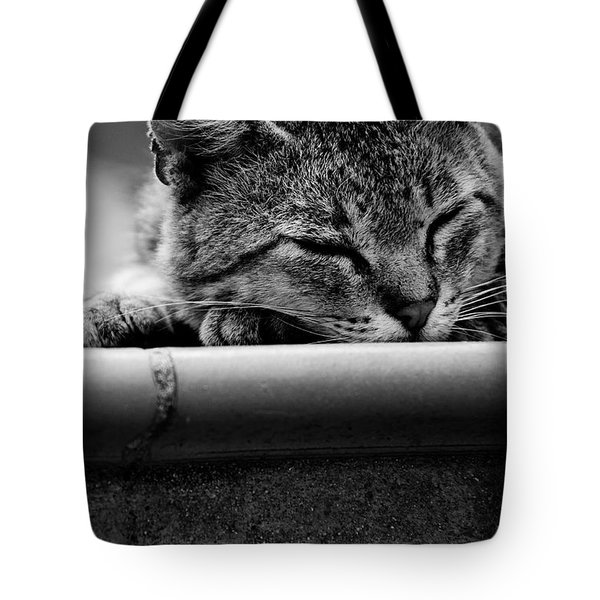Tote Bag featuring the photograph Sleeping by Laura Melis