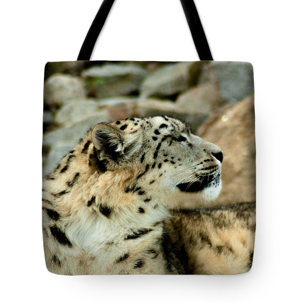 Snow Leopard Tote Bag by Daniel Precht