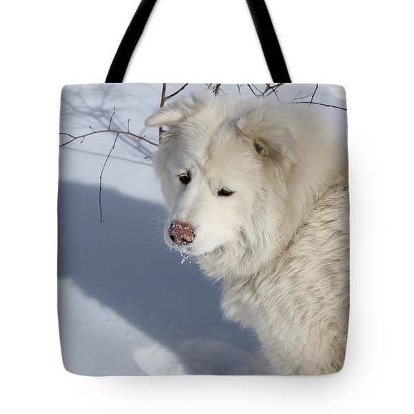 Tote Bag featuring the photograph Snowy Nose by Fiona Kennard