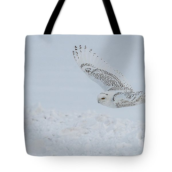 Tote Bag featuring the photograph Snowy Owl #2/3 by Patti Deters