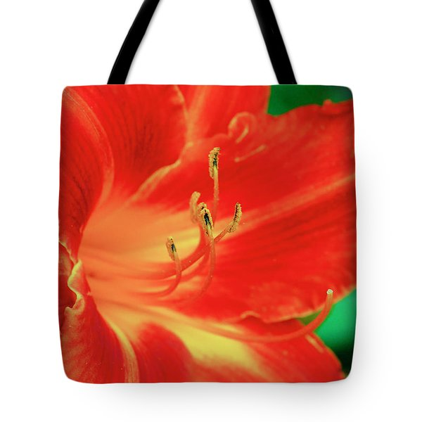 Red, Orange And Yellow Lily Tote Bag