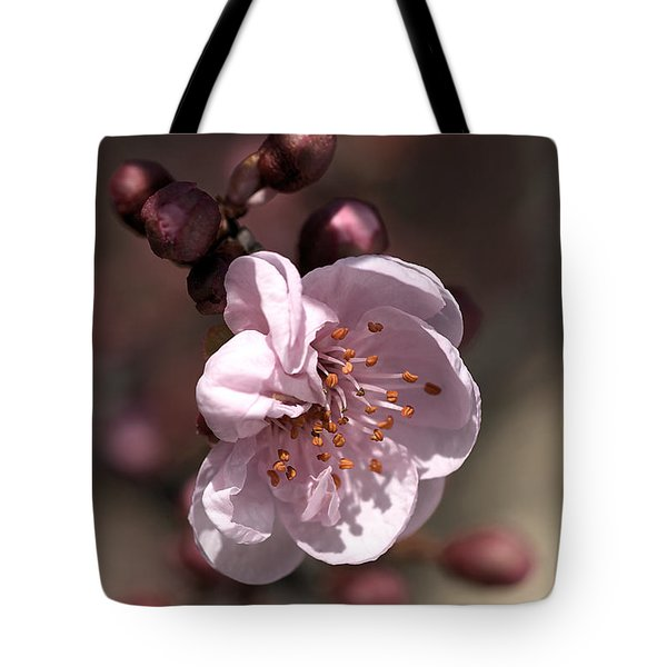 Tote Bag featuring the photograph Spring Blossom by Joy Watson