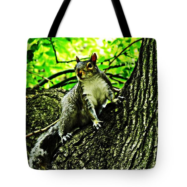 Squirrel Tote Bag by Sarah Loft