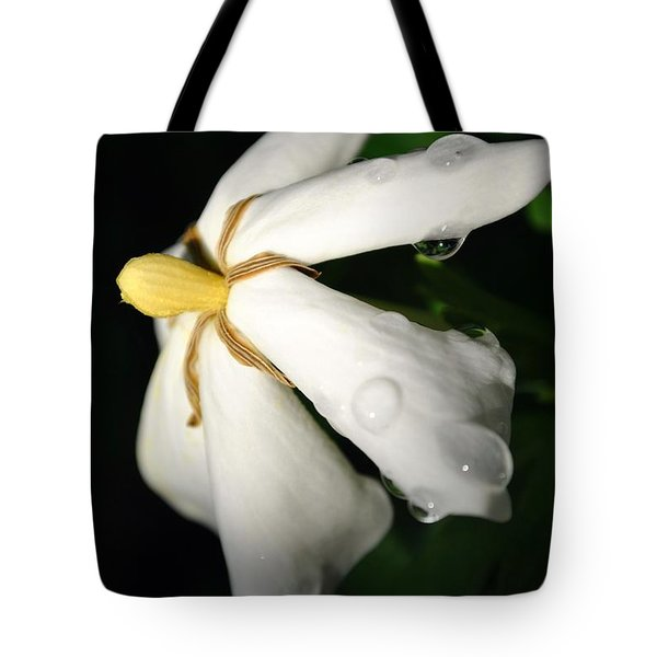 Tote Bag featuring the photograph Sun Kissed Gardenia by Kelly Nowak