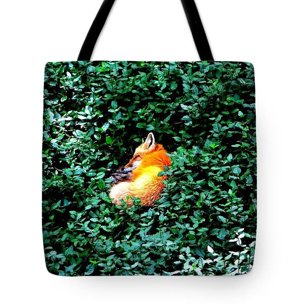 Tote Bag featuring the photograph Sweet Slumber by Deena Stoddard