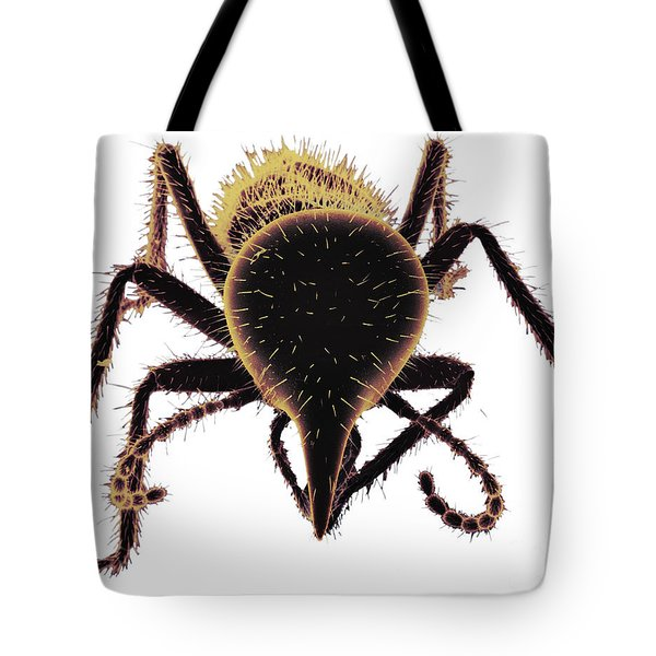 Termite Soldier Tote Bag by David M. Phillips