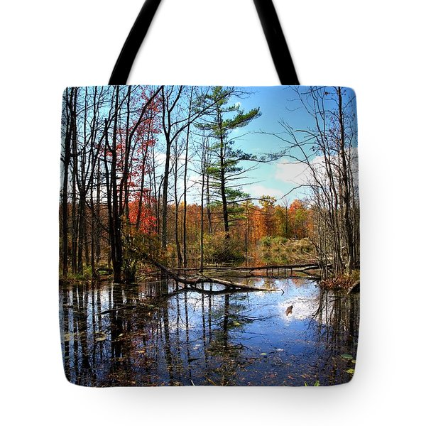 The Beautiful Fall Tote Bag by Paul Ge