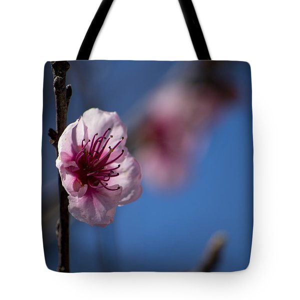 The Spring Is Coming Tote Bag