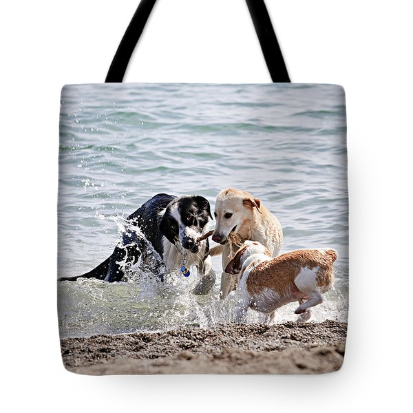 Three Dogs Playing On Beach Tote Bag by Elena Elisseeva