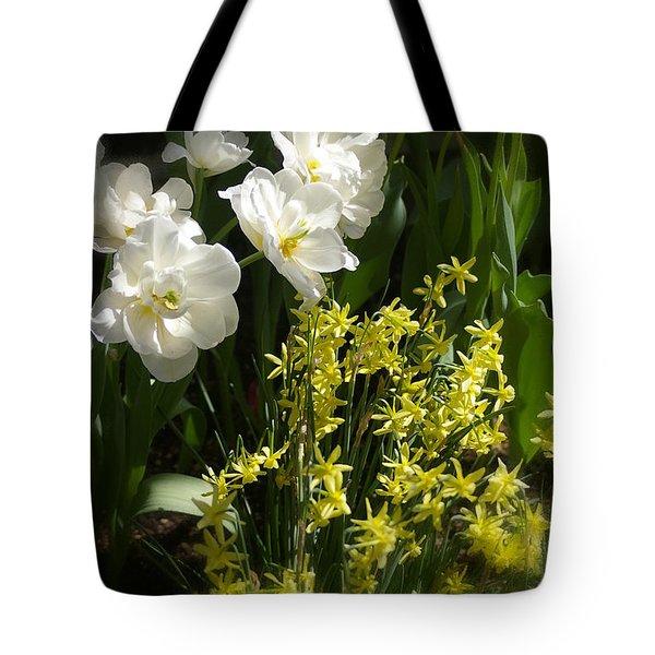 Three Of A Kind Tote Bag by Randy Pollard