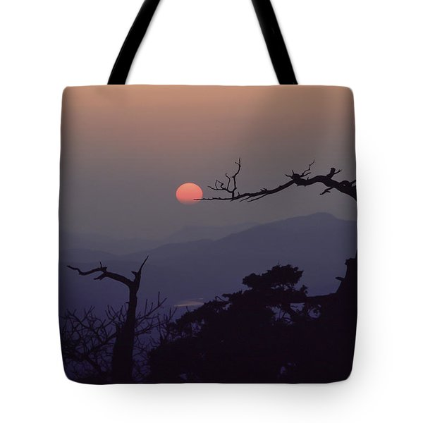 Tree And Sun From Mt Scott Tote Bag