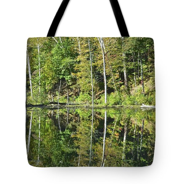 Two Of A Kind Tote Bag by Frozen in Time Fine Art Photography