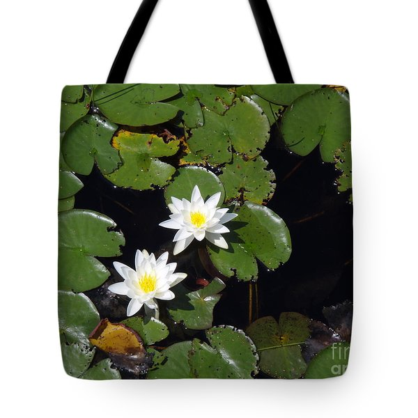 Tote Bag featuring the photograph 2 Water Lily by Robert Nickologianis
