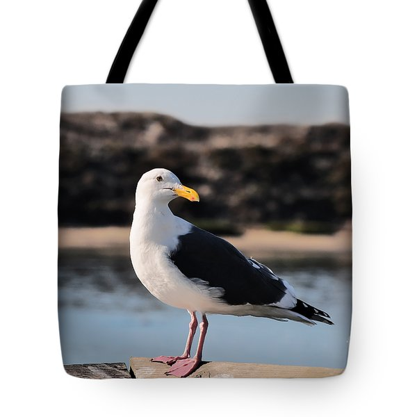 Western Gull At Moss Landing Inlet Tote Bag