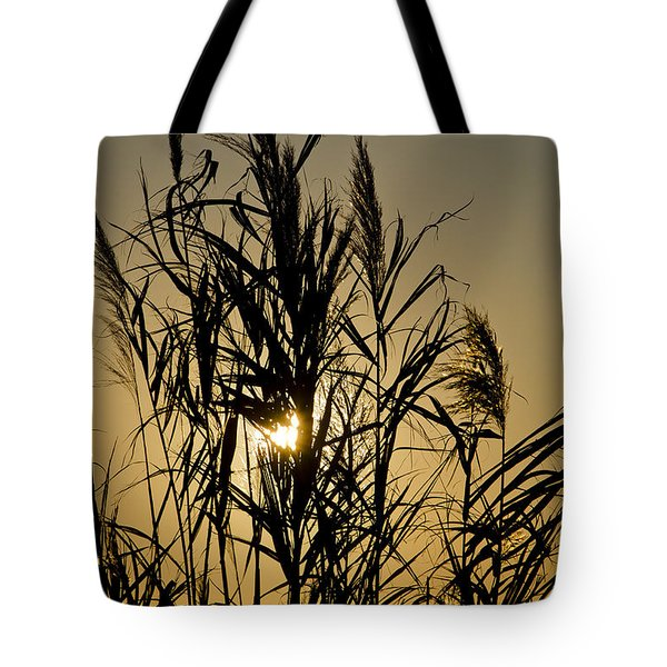 Tote Bag featuring the photograph Whalehead Sunset Obx #3 by Greg Reed