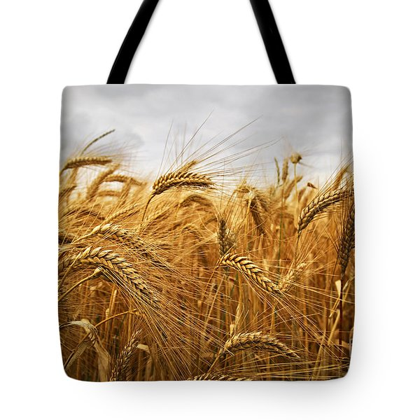 Wheat Tote Bag by Elena Elisseeva