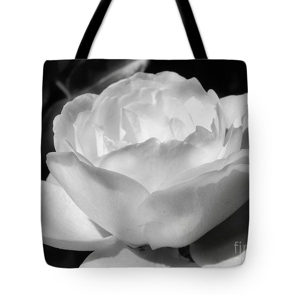 White Rose Tote Bag by Amy Williams
