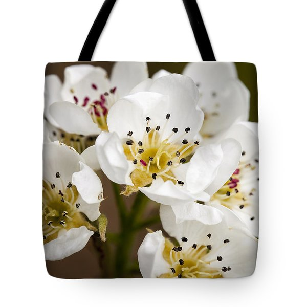 Beautiful White Spring Blossom Tote Bag