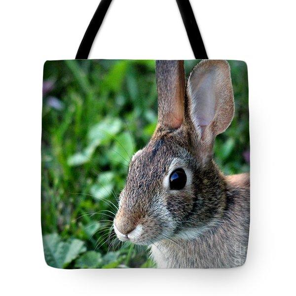 Wild Rabbit Tote Bag by J McCombie