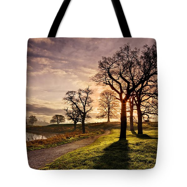 Winter Morning Shadows / Maynooth Tote Bag