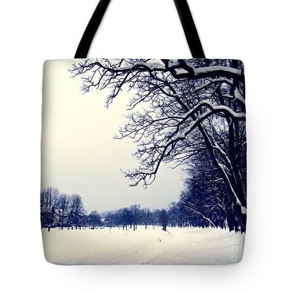Winter Tote Bag by Nina Ficur Feenan