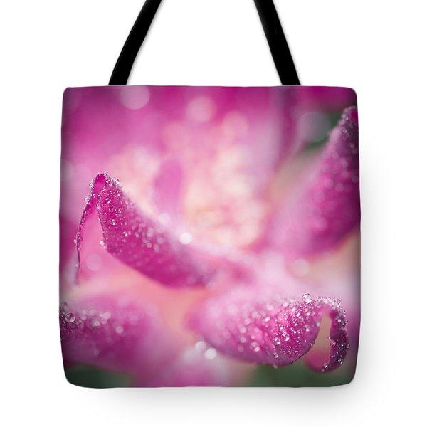 Winter Rose Tote Bag by Priya Ghose