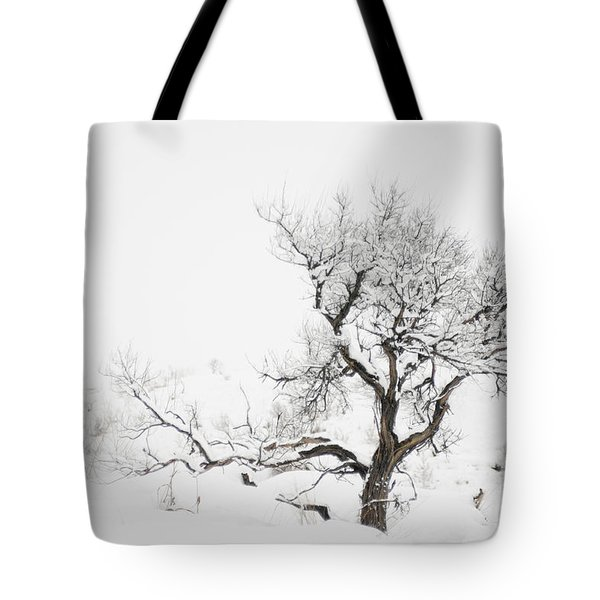 Winter Sage Tote Bag by Sandi Mikuse