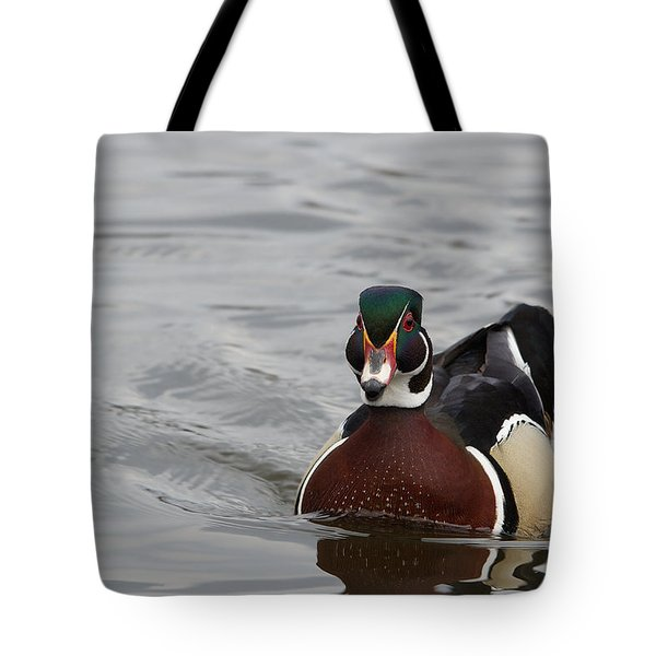 Tote Bag featuring the photograph Wood Duck - Canard Branchu - Aix Sponsa by Nature and Wildlife Photography