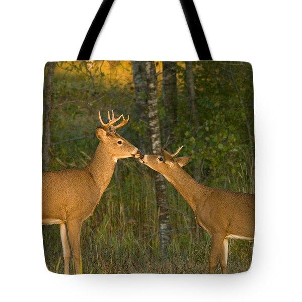 White-tailed Deer Tote Bag by Linda Freshwaters Arndt