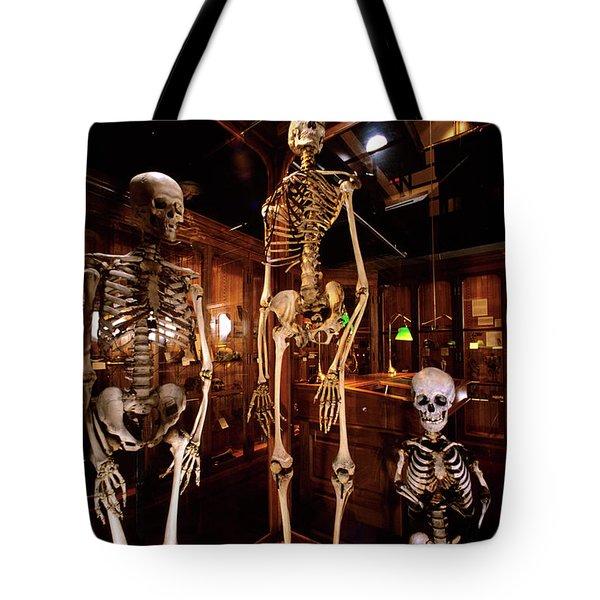 2000s Three Human Skeletons Displayed Tote Bag