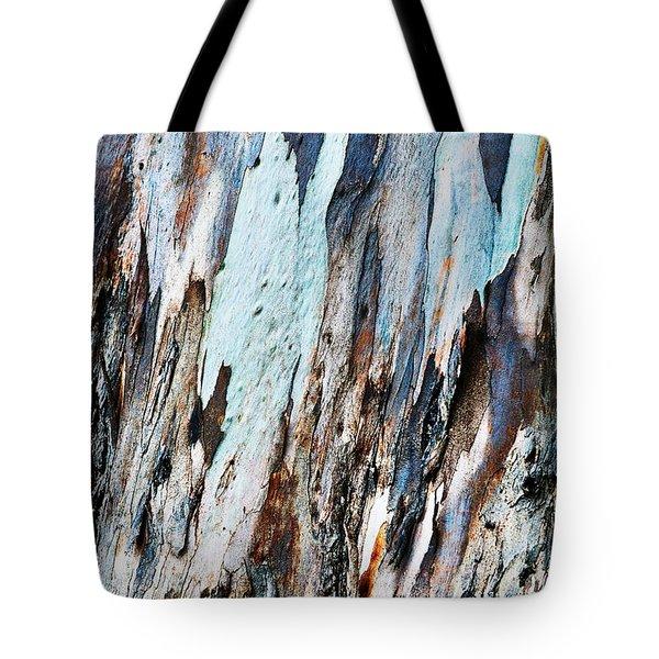 20150216181150fla3699c1p Tote Bag by Fernando Lopez Arbarello