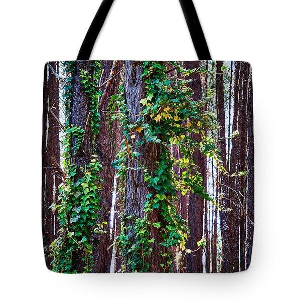 20150218112550fla24186c1p Tote Bag by Fernando Lopez Arbarello