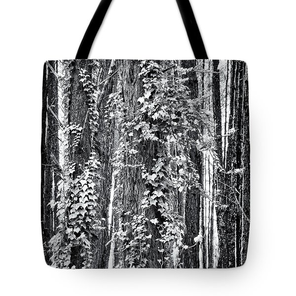 20150218112550fla24186c1p_mono Tote Bag by Fernando Lopez Arbarello