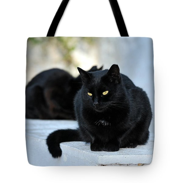 Cat In Hydra Island Tote Bag by George Atsametakis