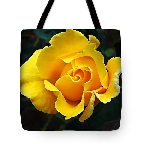 Tote Bag featuring the photograph 24 Karat by Nick Kloepping