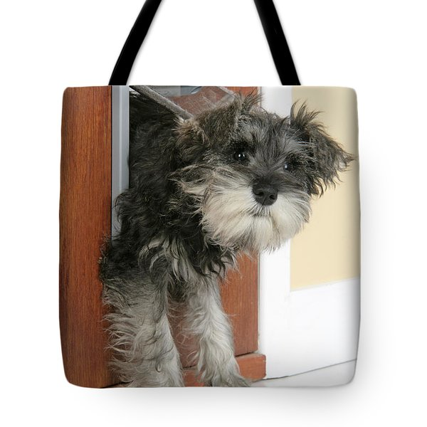 Schnauzer Puppy Dog Tote Bag