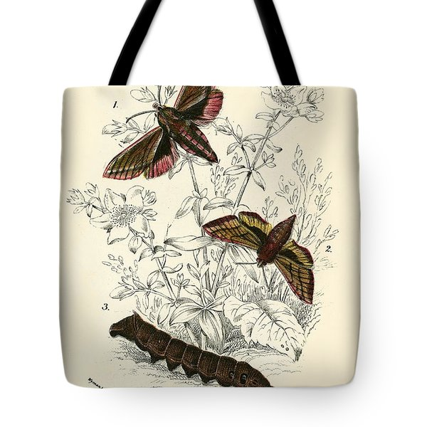 Butterflies Tote Bag by English School