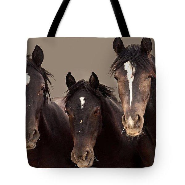 3 Amigos Sepia Wild Mustang Tote Bag by Rich Franco