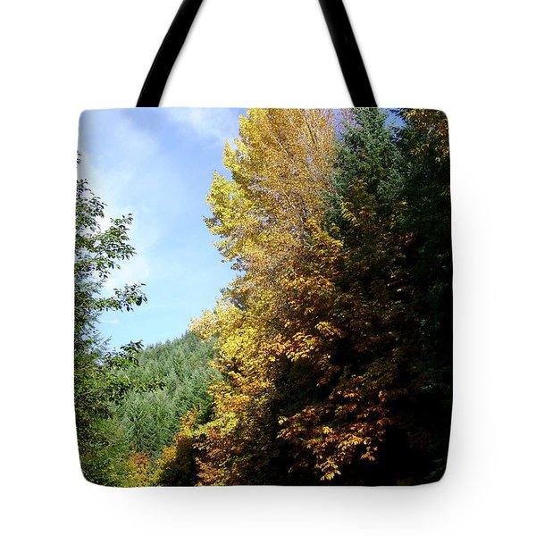 Autumn 2 Tote Bag by J D Owen