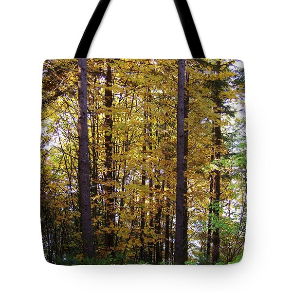 Autumn 5 Tote Bag by J D Owen